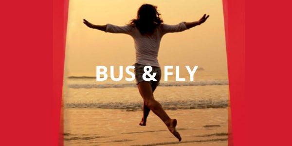 Autobús más avión con Iberia y Avanza