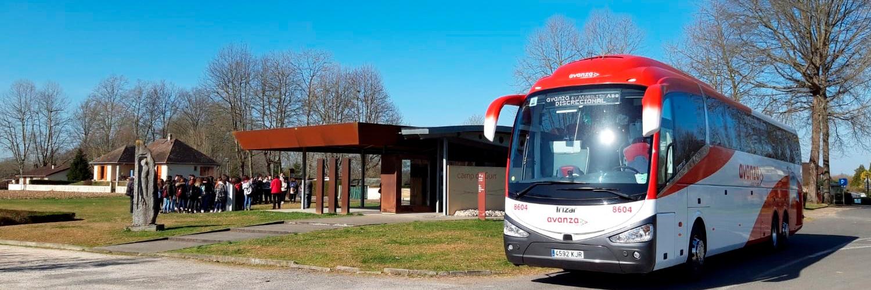 Alquiler de autobús con conductor para tours y excursiones